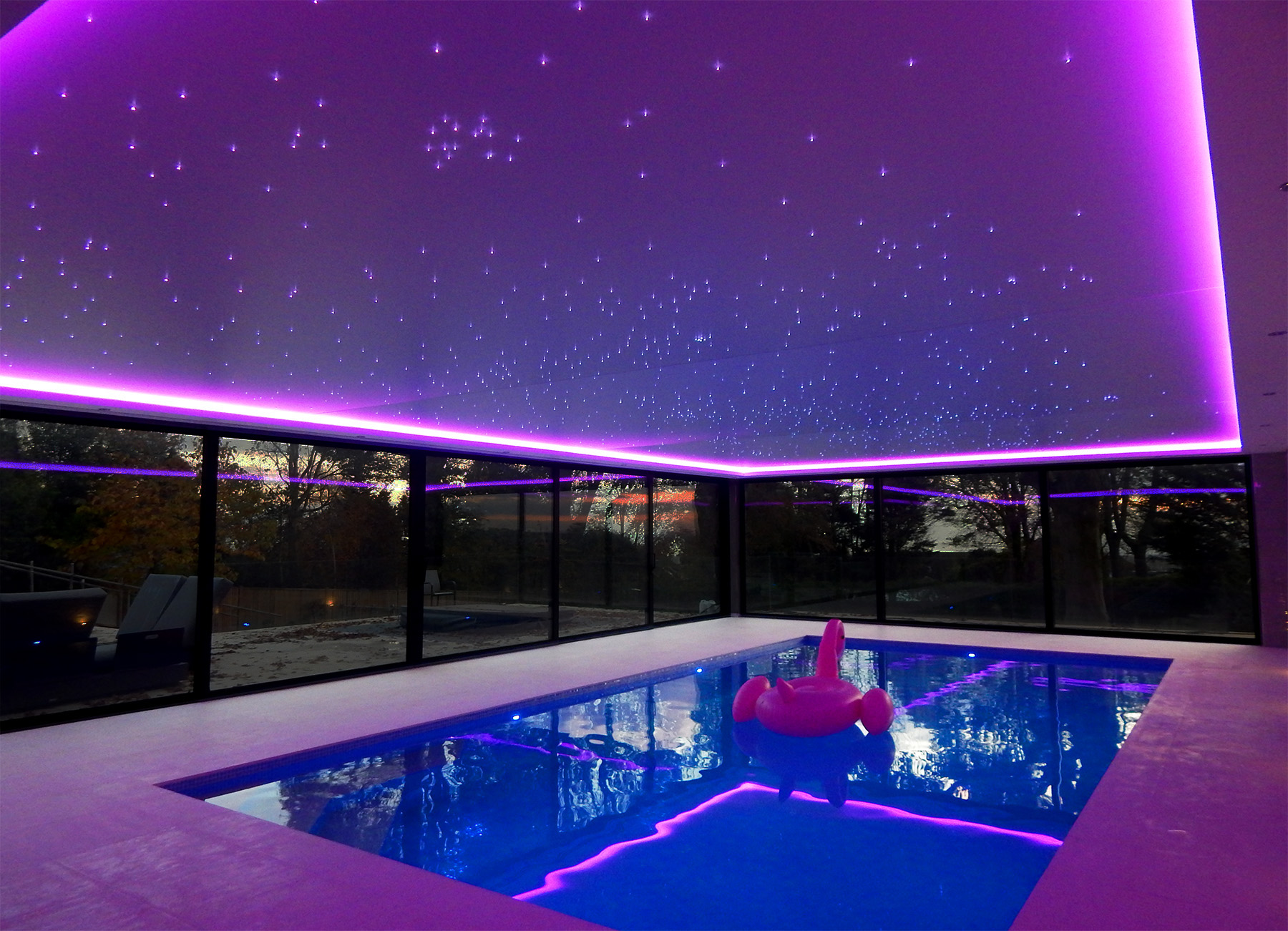 Swimming Pool Purple